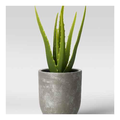 Faux Aloe in Pot Gray/Green - Project 62™