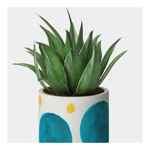 """4"""" Ceramic Stoneware Planter White with Blue/Yellow Dots - Project 62™"""