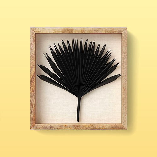 Dried Natural Palm Leaf Shadow Box Black - Threshold™