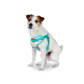 Dog Harness Variegated Stripe - Sun Squad™