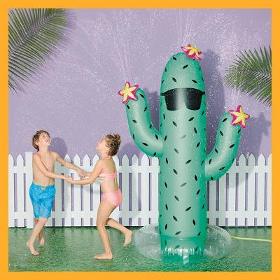 Cactus Sprinkler - Sun Squad™