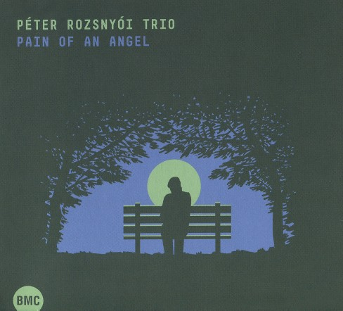Peter rozsnyoi - Pain of an angel (CD) - image 1 of 1