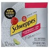 Schweppes Raspberry Lime - 12pk/12 fl oz Cans - image 3 of 4