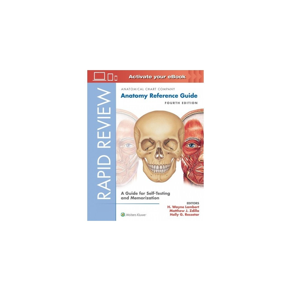 Rapid Review : Anatomy Reference Guide: A Guide for Self-testing and Memorization - 4 Pap/Psc