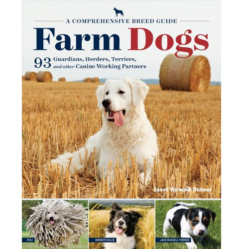 Farm Dogs : A Comprehensive Breed Guide to 93 Guardians, Herders, Terriers, and Other Canine Working - image 1 of 1