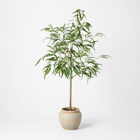 "73"" Artificial Weeping Eucalyptus Tree in Pot - Threshold™ designed with Studio McGee - image 1 of 4"