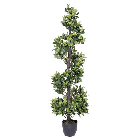 Artificial Spiral  Bay Tree in Pot (5ft) Green - Vickerman® - image 1 of 1