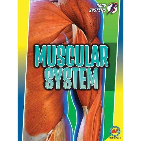 Muscular System - (Body Systems) by  Simon Rose (Paperback) - image 1 of 1