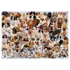 Ravensburger Dogs Galore Jigsaw Puzzle - 1000pc - image 2 of 2