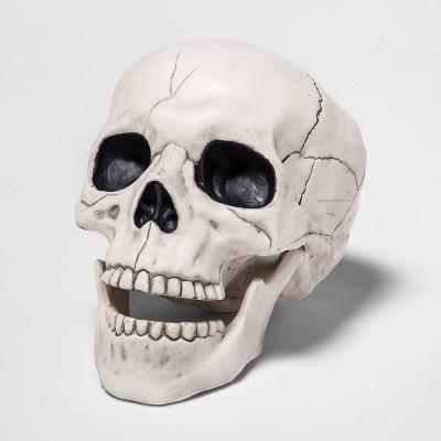 Skull Halloween Decorative Prop - Hyde & EEK! Boutique™