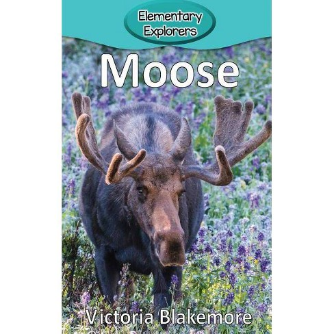 Moose - (Elementary Explorers) by  Victoria Blakemore (Hardcover) - image 1 of 1