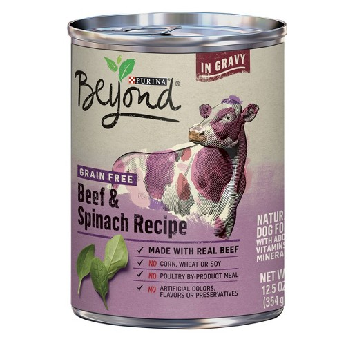 Purina Beyond Grain Free, Natural Gravy Wet Dog Food, Grain Free Beef & Spinach Recipe - 12.5oz - image 1 of 5