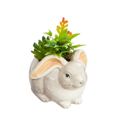 Evergreen Cypress Home Ceramic Rabbit Planter with Succulent