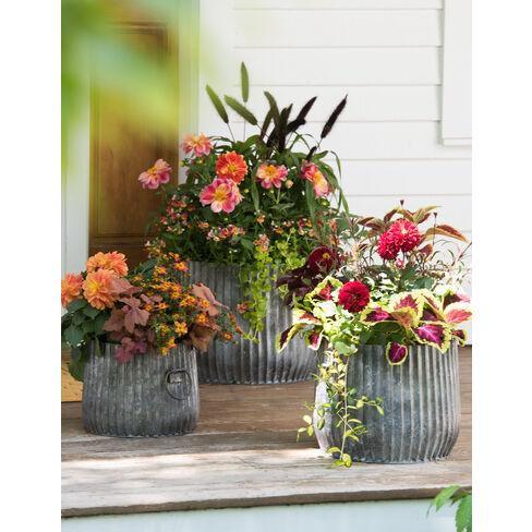 "Galvanized Ribbed Barrel Planter, 10"" - Gardener's Supply Company - image 1 of 2"