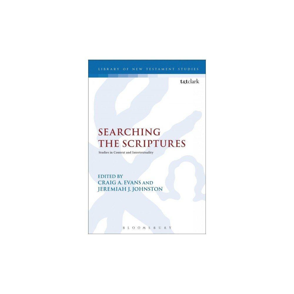 Searching the Scriptures : Studies in Context and Intertextuality - (Paperback)