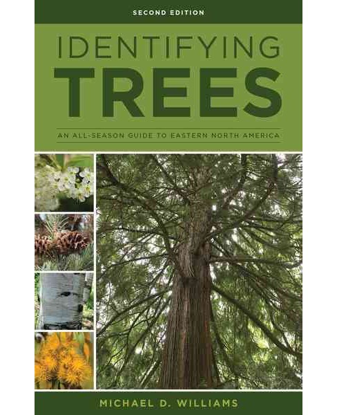 Identifying Trees of the East : An All-Season Guide to Eastern North America -  (Paperback) - image 1 of 1