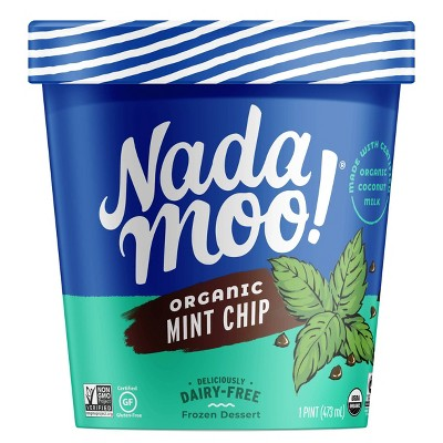 NadaMoo! Organic Mint Chip Dairy-Free Frozen Dessert - 16oz