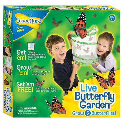 2 more - Live Butterfly Garden