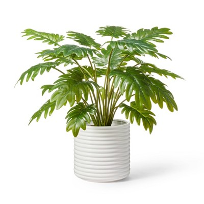 """22"""" x 14"""" Faux Philodendron Selloum Plant in Ribbed Ceramic Pot White - Hilton Carter for Target"""