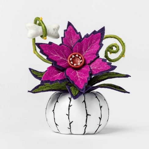 Creepy Succulent in White Pumpkin Halloween Dcor - Hyde & EEK! Boutique - Hyde and Eek! Boutique™ - image 1 of 1