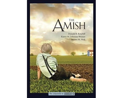 Amish -  Reprint by Donald B. Kraybill & Karen M. Johnson-weiner & Steven M. Nolt (Paperback) - image 1 of 1