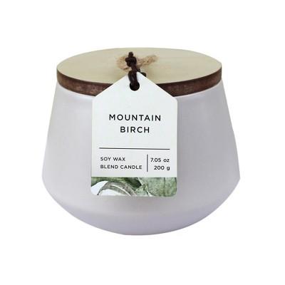 7.05oz Matte Ceramic Jar Candle Mountain Birch - Chesapeake Bay Candle