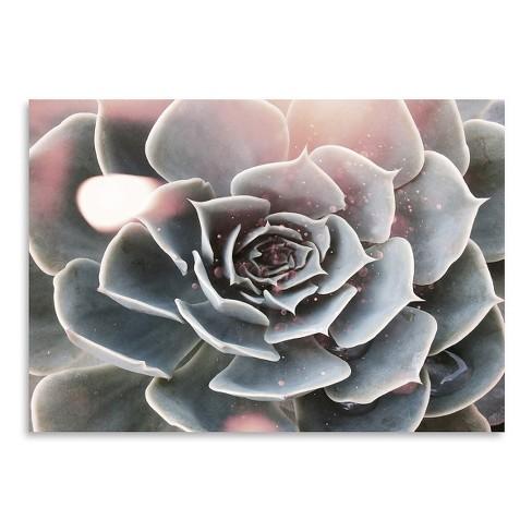Americanflat Shiny Succulent By Emanuela Carratoni Unframed Print Target