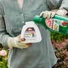 Ortho Rose & Flower Disease Control Concentrate - image 3 of 4