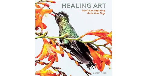 Healing Art : Don't Let Anything Ruin Your Day (Hardcover) (Robert Flatt) - image 1 of 1