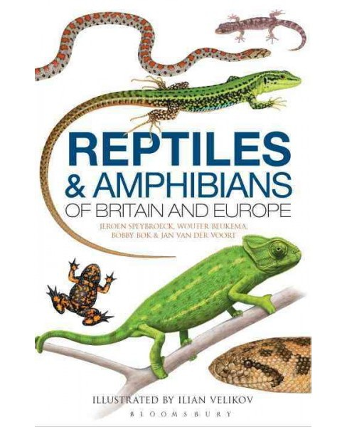 Field Guide to the Amphibians & Reptiles of Britain and Europe (Paperback) (Jeroen Speybroeck & Wouter - image 1 of 1