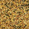 Kaytee Wild Bird Food - 10lb - image 3 of 4