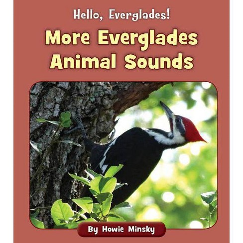 More Everglades Animal Sounds - (Hello, Everglades!) by  Howie Minsky (Paperback) - image 1 of 1
