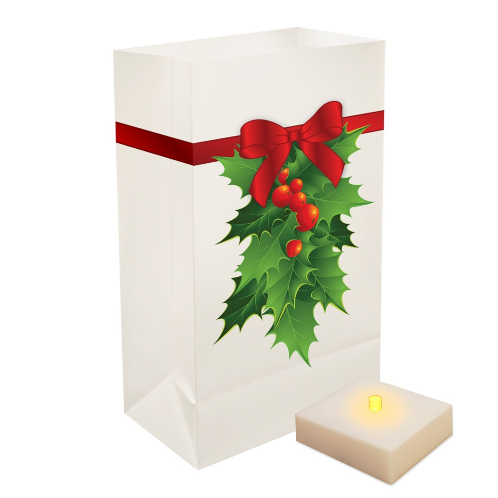 Image of 6ct Battery Operated LED Luminaria Kit With Timer Holly - LumaBase