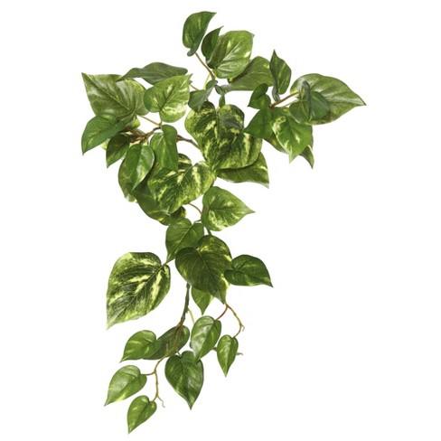 "Vickerman 18"" Artificial Green Pothos Hanging Bush. - image 1 of 1"