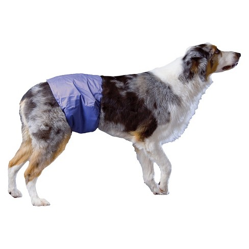 Poochpants Reusable Male Wrap Diapers For Pets Target