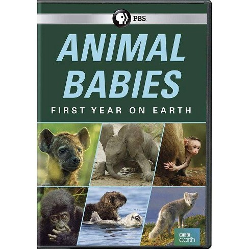 Animal Babies: The First Year on Earth (DVD) - image 1 of 1