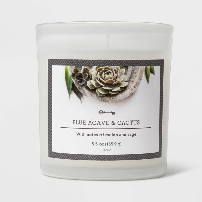 5.5oz Glass Jar Blue Agave and Cactus Candle - Threshold™