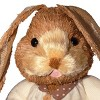 """36"""" Floppy Ear Brown Bunny - National Tree Company - image 3 of 4"""