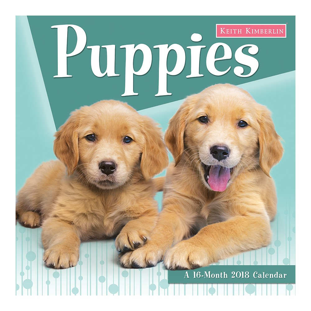 2018 Keith Kimberlin Puppies Wall Calendar - Trends International, Multi-Colored