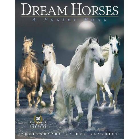 Dream Horses - (Paperback) - image 1 of 1