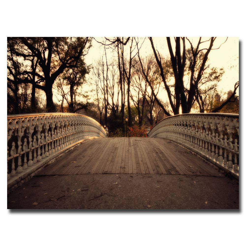 'Bridge' by Ariane Moshayedi Ready to Hang Canvas Wall Art (22x32) was $60.99 now $45.74 (25.0% off)