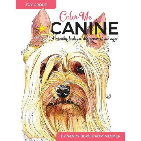 Color Me Canine (Toy Group) - by  Sandy Bergstrom Mesmer (Paperback) - image 1 of 1