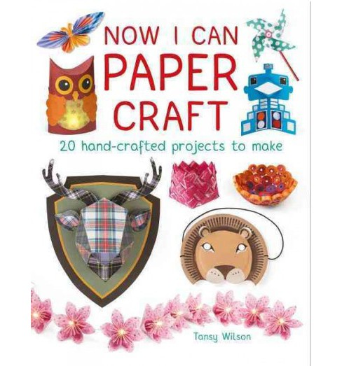 Now I Can Paper Craft : 20 Hand-Crafted Projects to Make (Paperback) (Tansy Wilson) - image 1 of 1