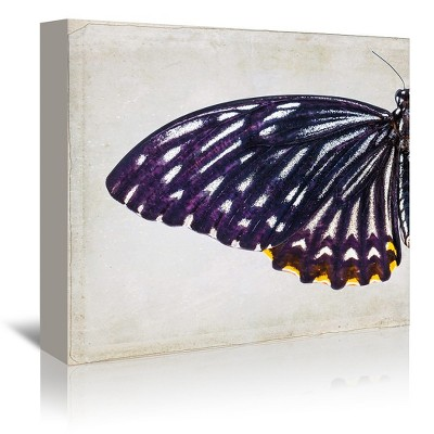 Americanflat Purple Butterfly I by Chaos & Wonder Design Wrapped Canvas