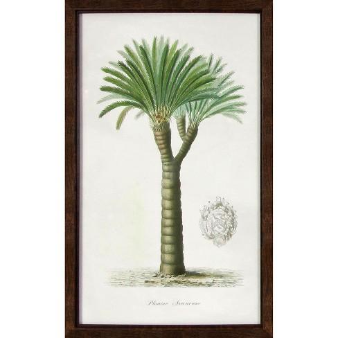 Vintage Framed Palm Tree Wall Art Threshold