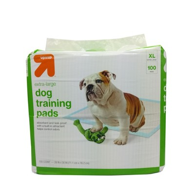 Puppy and Adult Dog Training Pads - XL - 100ct - Up&Up™