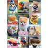 Buffalo Games Art of Play: Boo The World's Cutest Dog Collage Puzzle 500pc - image 2 of 2