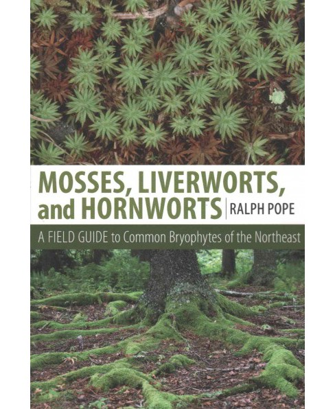 Mosses, Liverworts, and Hornworts : A Field Guide to Common Bryophytes of the Northeast (Paperback) - image 1 of 1