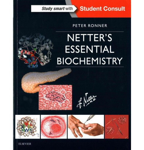 Netter's Essential Biochemistry (Paperback) (Ph.D. Peter Ronner) - image 1 of 1
