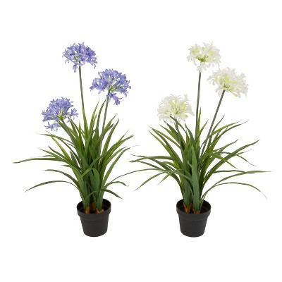 Gerson International 37-Inch High Assorted Artificial Agapanthus in Pot, Set of 2